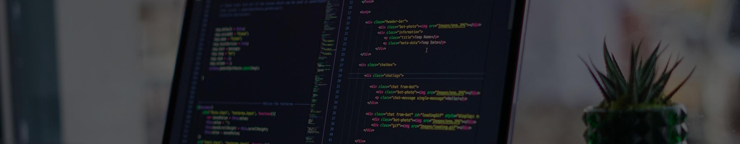 Empleo desarrollo web